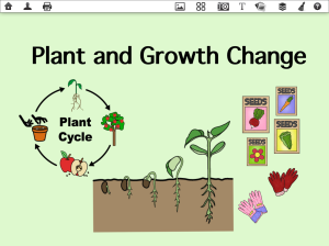 Plant Growth and Change